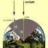 مقاله در مورد اندازه گیری شعاع زمین