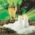 پروژه فرایند تولید قند و شکر از چغندر قند